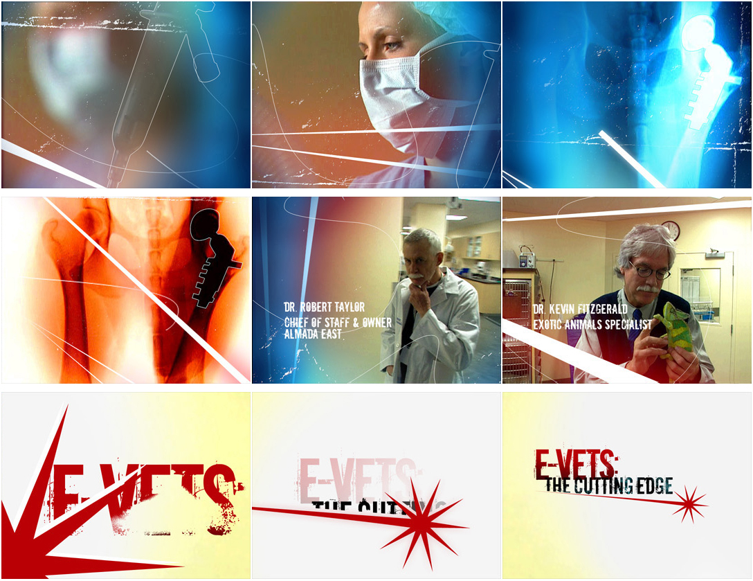 evets480x480_C2P E-Vets: The Cutting Edge - title sequence